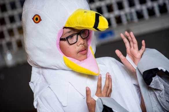 NDLE 2018 seagull learner